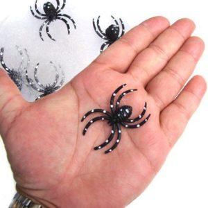 4 araignées avec leur toile