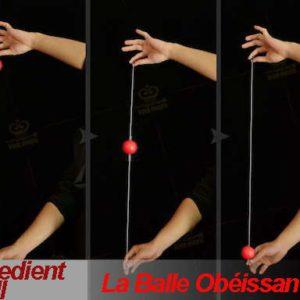La Balle Obéissante