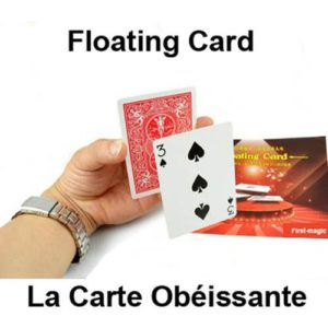 Carte Obéissante en Bicycle à dos Rouge