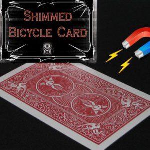 Carte Magnétisable Professionnelle bicycle
