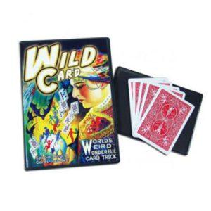 DVD Wild Card (cartes folles) avec cartes spéciales bicycle