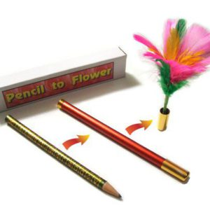 Transformation d'un Crayon en Fleurs